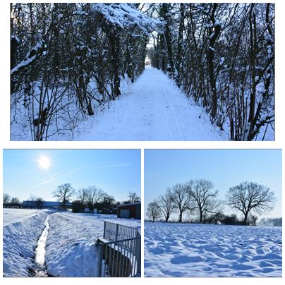 Schnee 2013